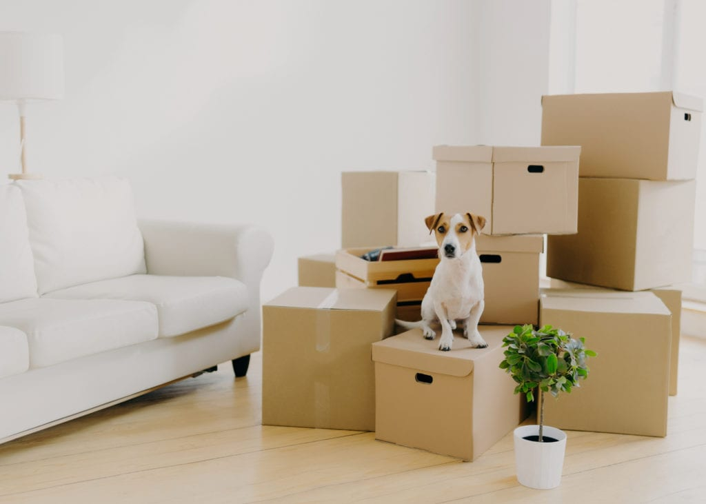 The secret to easy home moving? Start with the right moving boxes.